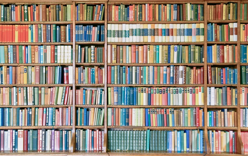 Turboweb facilita bajar libros en Internet